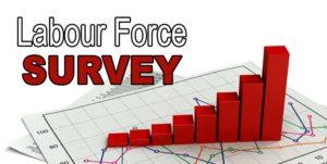 Periodic Labour Force Survey